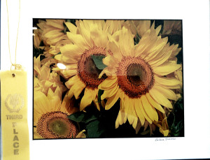 """Blanket of Sunflowers, 3rd prize, Barbara Sherman"